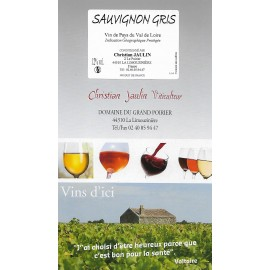 Sauvignon Gris - vdp - Bag in box