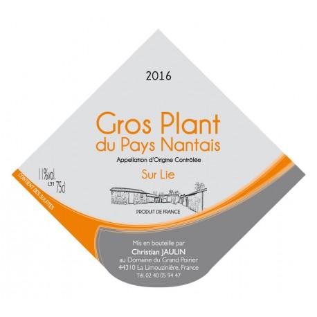 Gros Plant sur Lie du Pays Nantais 2016